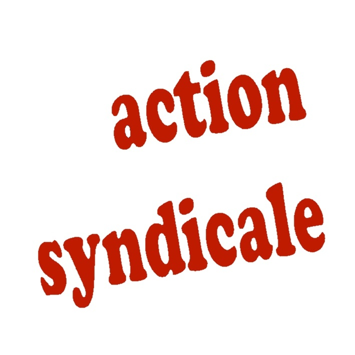 action syndicale N°6 – janvier 2013